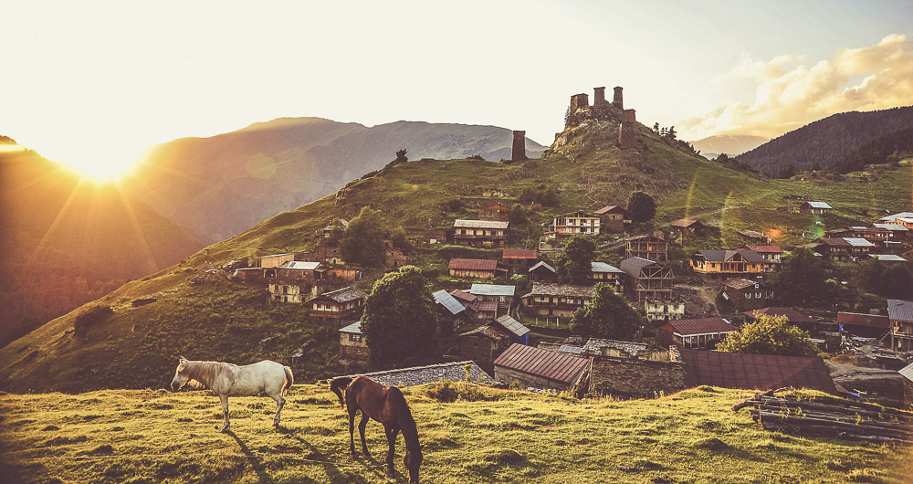 In Tusheti you will find a lot of horses